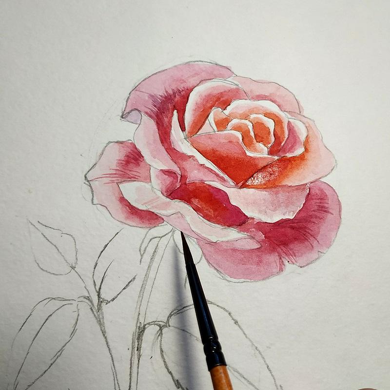 Тонкой кистью штрихуем лепестки розы